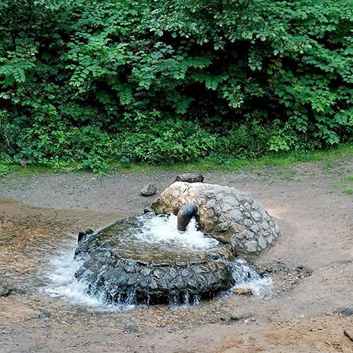 Muko-Spendenlauf 2021 - ein Srpingbrunnen im Wald